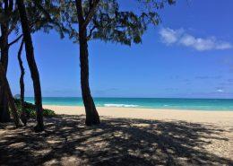 Magnum PI Hawaii home set to be demolished