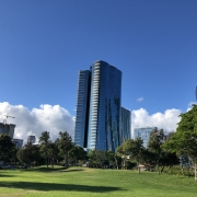 Resale condo market in Ward Village, Kakaako