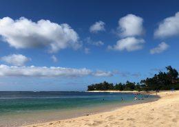 Hawaii Luxury Home market report July 2020
