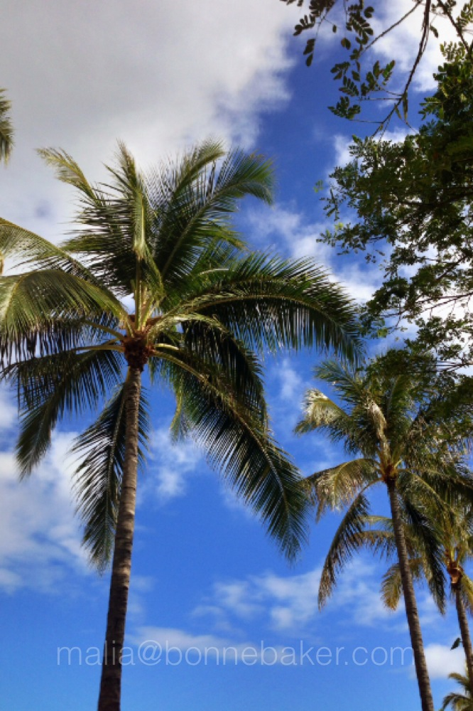 Ritz Carlton Waikiki